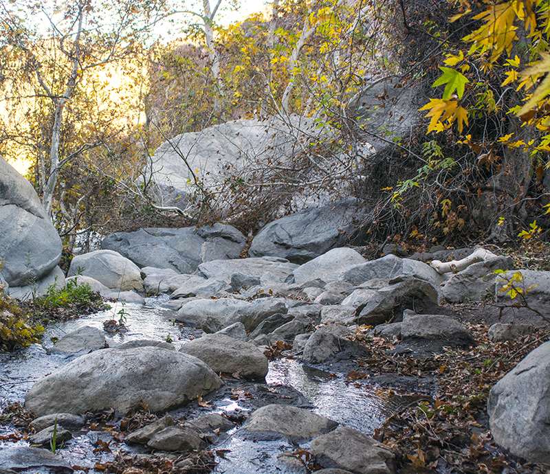 Tahquitz Canyon Water